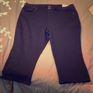 Lane Bryant Black Pedal Pants